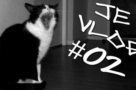 JE VLOG #02 Petit chat et thé d'hier